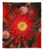 Red Gum Flower Macro Fleece Blanket