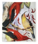 Red Hawaiian Honeycreeper Fleece Blanket