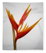 Red Heliconia Fleece Blanket