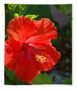 Red Hibiscus II Fleece Blanket