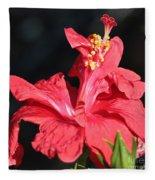 Red Hibiscus Square 2 Fleece Blanket