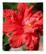 Red Hibiscus Square Fleece Blanket