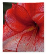 Red Hippeastrum Charisma Fleece Blanket