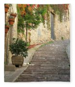Red Ivy And Steps In Assisi Italy Fleece Blanket