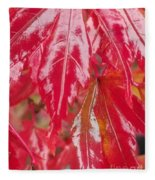 Red Leaf Abstract Fleece Blanket