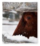 Red Milking Devon Snowflakes Fleece Blanket