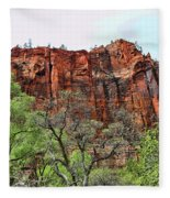 Red Mountains Zion National Park Usa Fleece Blanket