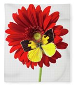 Red Mum With Dogface Butterfly Fleece Blanket