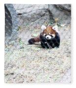 Red Panda Cub Fleece Blanket