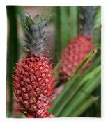 Red Pineapples Fleece Blanket