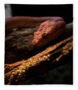 Red Poisonous Snake Fleece Blanket