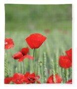 Red Poppy Flower And Green Wheat Nature Spring Scene Fleece Blanket