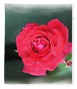 Red-red Rose. Fleece Blanket