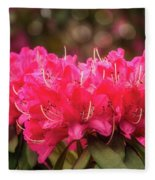 Red Rhododendron Flowers At Floriade, Canberra, Australia. Fleece Blanket