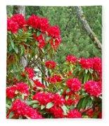 Red Rhododendron Garden Art Prints Rhodies Landscape Baslee Troutman Fleece Blanket
