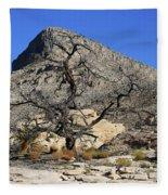 Red Rock Canyon Nv 1 Fleece Blanket