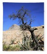 Red Rock Canyon Nv 10 Fleece Blanket