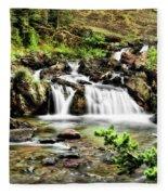 Red Rock Falls, Glacier National Park, Montana Fleece Blanket