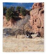 Red Rock Riders Fleece Blanket