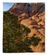 Red Rock Textures Fleece Blanket
