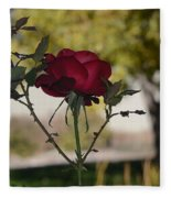 Red Rose 1 Fleece Blanket