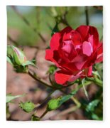 Red Rose And Buds Fleece Blanket