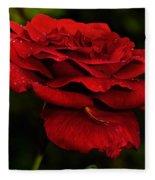Red Rose Fleece Blanket
