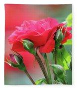 Red Rose Flower Fleece Blanket