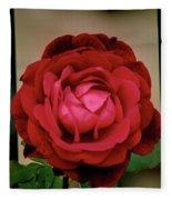 Red Rose  V2 Fleece Blanket