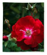 Red Rose With Buds Fleece Blanket