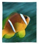 Red Sea Clownfish  Fleece Blanket