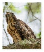 Red Shoulder Hawk Fleece Blanket