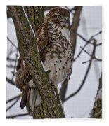 Red Shouldered Hawk - Madison - Wisconsin Fleece Blanket