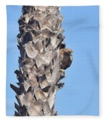 Red Shouldered Hawk On Palm Tree Fleece Blanket