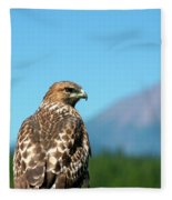 Red-shouldered Hawk With Mt. Mclaughlin In The Background Fleece Blanket