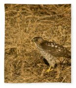 Red Tail Hawk Walking Fleece Blanket