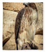 Red-tailed Hawk 4 Fleece Blanket