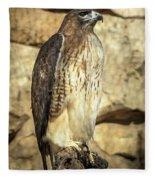 Red-tailed Hawk 5 Fleece Blanket