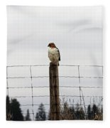 Red Tailed Hawk On The Lookout Fleece Blanket