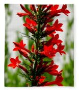 Red Texas Plume Flowers Fleece Blanket