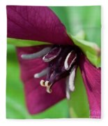 Red Trillium.. Fleece Blanket