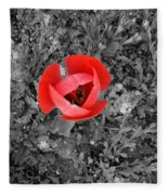 Red Tulip From Above Fleece Blanket