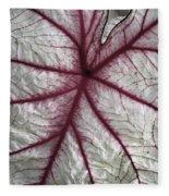 Red Veined Leaf Fleece Blanket