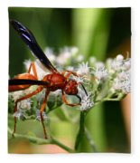 Red Wasp On Lace Fleece Blanket