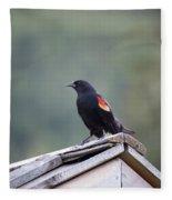 Male Red Wing Black Bird Fleece Blanket