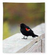 Red Winged Blackbird Fleece Blanket