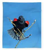 Red-winged Blackbird Fleece Blanket