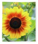 Red Yellow Sunflower Fleece Blanket