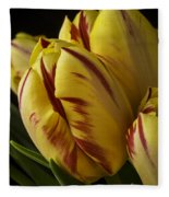 Red Yellow Tulip Fleece Blanket