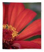 Red Zina Fleece Blanket